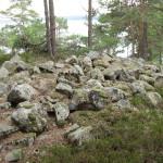 26/5-2009  Rusletur på Heiåslandet i Dalefjerdingen