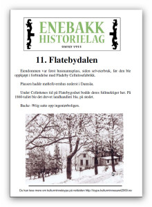 11. Flatebydalen