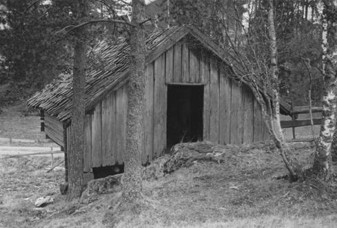 Tjona fotografert på gården Vik i Ytre Enebakk før flyttingen i 1958.