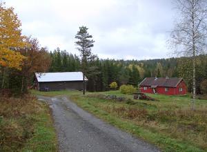 bjornholt