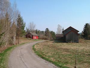 kvernstua1