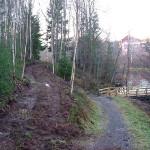 15/11-2006   To nye stier er nåpåbegynt ved Tangenelva