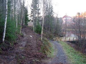 Stier Tangenelva 2006