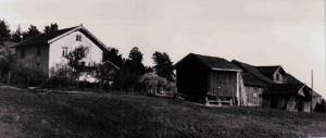 Kjærsrud gård Dalefjerdingen  1931       0229-377-0003