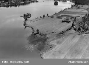 Kjellgård  20 07 1954