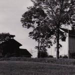 Nes gård  Ytre Enebakk