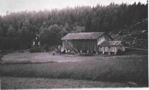 Padderud gård  1912   0229-001-0113