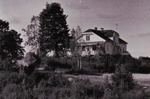 Rustad ved Langen (2)