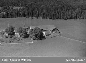 Tukkebøl 1956