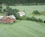 Holt gård