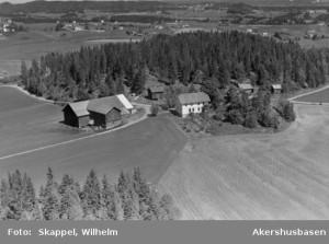 Barbøl 1956