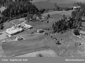 Tangen Gård 20 07 1954