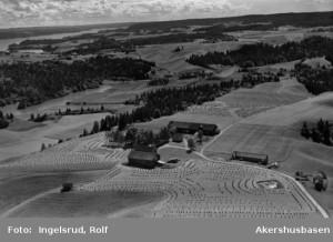 Krogsbøl 1952