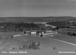 Krogsbøl 1956